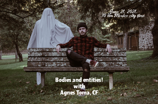 Entities and bodies
